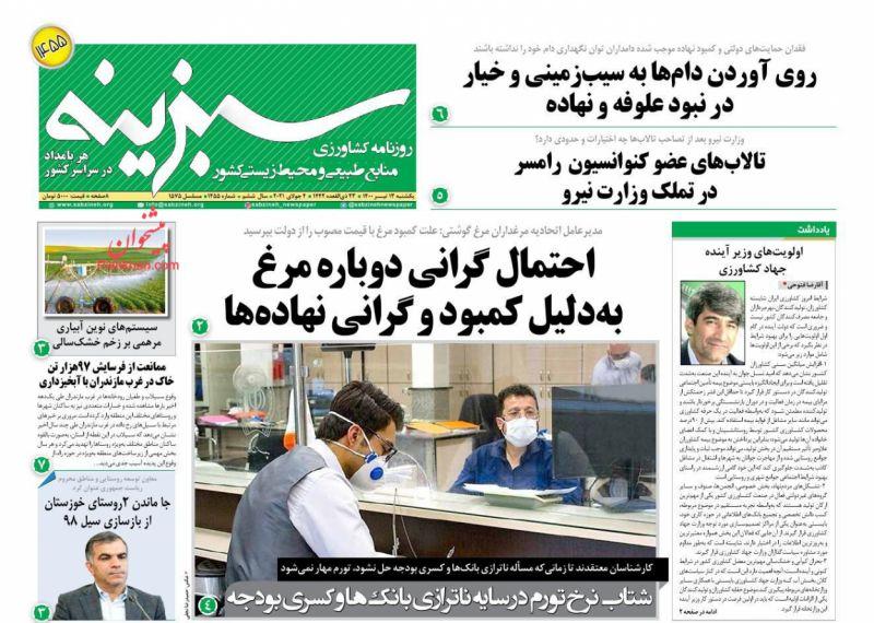 عناوین اخبار روزنامه سبزینه در روز یکشنبه ۱۳ تیر